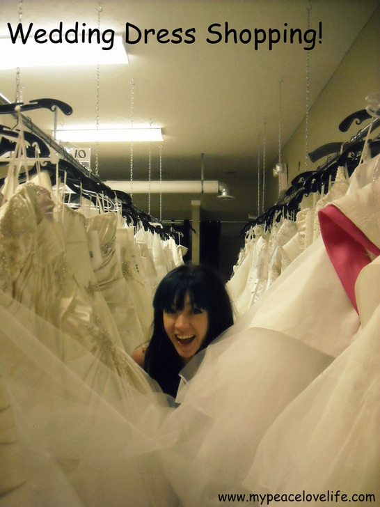 China Barbie going Wedding Dress Shopping!