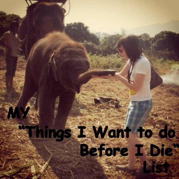 China Barbie's Things I Want to Do Before I Die List